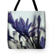 Agapanthus - Love Flower -2  Tote Bag