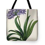 Agapanthus Umbrellatus Tote Bag