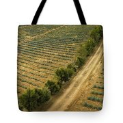 Agave Fields Tote Bag