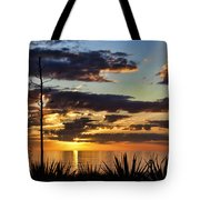 Agave Sunset Tote Bag