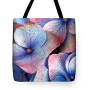 Ageing Hydrangea Tote Bag