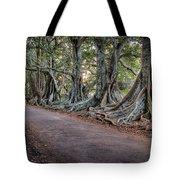 Ageless Norfolk Tote Bag