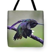 Aggressive Behavior - Ruby-throated Hummingbird Tote Bag