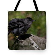 Ah Thats Much Better Tote Bag