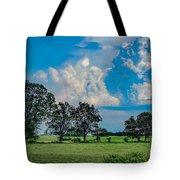 Ahhhh...june. Tote Bag by Kendall McKernon