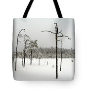 Ahvenlammi 10 Tote Bag