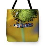 Ailanthus Webworm Moth #6 Tote Bag