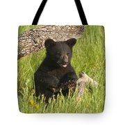 Ain't I Cute Tote Bag