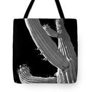Ain't No Saguaro In Texas Tote Bag