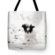 Airborne In Snow 2017 Tote Bag