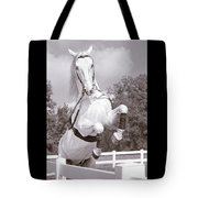 Airs Above The Ground - Lipizzan Stallion Rearing Tote Bag