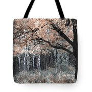 Airy Autumn In Woods Tote Bag