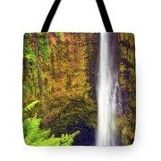 Akaka Falls Tote Bag