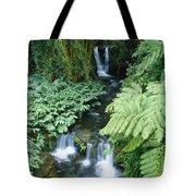 Akaka Falls Stream Tote Bag