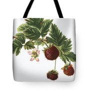 Akala Berries Tote Bag