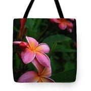 Akeakamai Pua Melia Tropical Plumeria Tote Bag