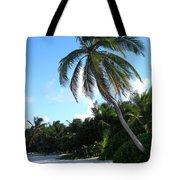 Akumal Sur Beach 01 Tote Bag