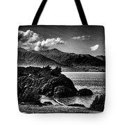Alaska Bw Grain  Tote Bag