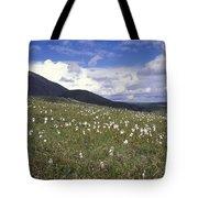 Alaska Cotton Eriophorum Scheuchzeri Tote Bag