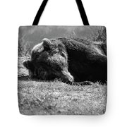 Alaska Grizzly - Do Not Disturb Grayscale Tote Bag