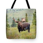 Alaska Monarch #3 Tote Bag