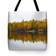 Alaska Reflection Tote Bag