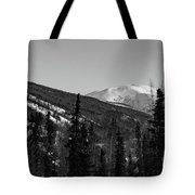 Alaska Wilderness Bw Tote Bag