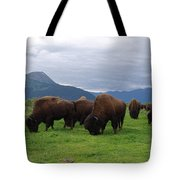 Alaska Wood Bison Tote Bag