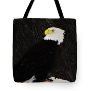 Alaskan Bald Eagle Tote Bag
