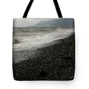 Alaskan Rock Beach Tote Bag