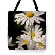 Alaskan Shasta Daisy Tote Bag
