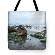 Alaskan Shoreline Tote Bag