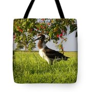 Albatross 1 Tote Bag