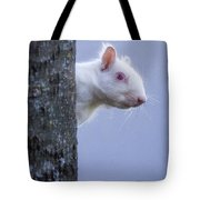 Albino Squirrel Tote Bag