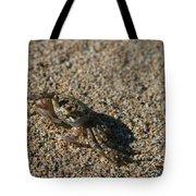Ale Eke Ohiki Kuau Sand Crab Tote Bag