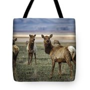 Alert On The Home Front Tote Bag