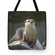 Alert Otter Amblonyx Cinerea Tote Bag