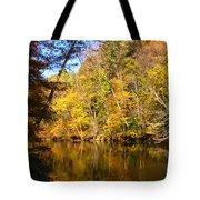 Alexandria Creek In The Fall Tote Bag