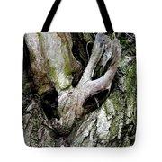 Alien In The Tree Tote Bag