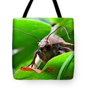 Alien Moth Tote Bag