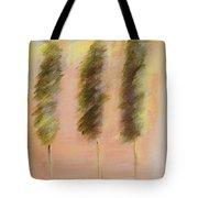 Alight Tote Bag
