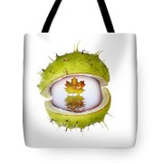All About Autumn Tote Bag