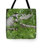 All About Trees Tote Bag