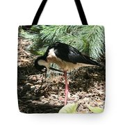 All Clear - Bird Looking Under Legs Tote Bag