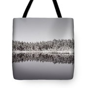 All Colors Of Gray. Panorama Tote Bag