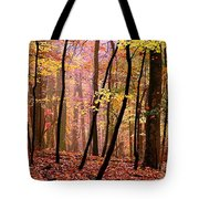 All Fall Tote Bag
