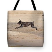 All Four Off The Ground Tote Bag