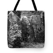 All In A Row At Fuerty Cemetery Roscommon Ireland Tote Bag