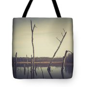 All Is Calm At Green Bottom Tote Bag