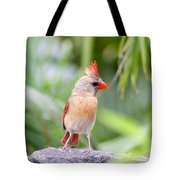 All Mohawk  Tote Bag
